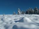 Winter-Eindrücke